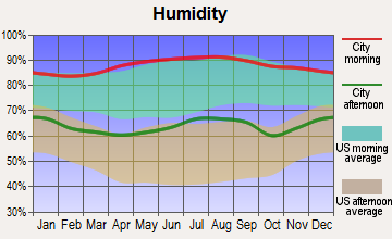 Bogalusa, Louisiana humidity