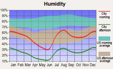 Rio Rico Southwest, Arizona humidity