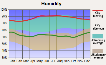 Many, Louisiana humidity