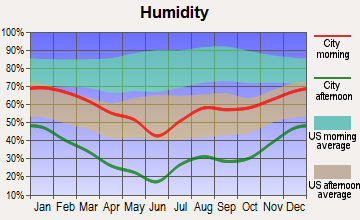 Shonto, Arizona humidity