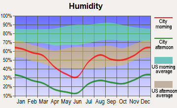 Ajo, Arizona humidity