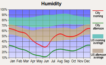Arizona City, Arizona humidity