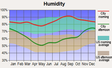 Au Gres, Michigan humidity