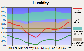Mesa, Arizona humidity