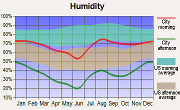 Nazlini, Arizona humidity
