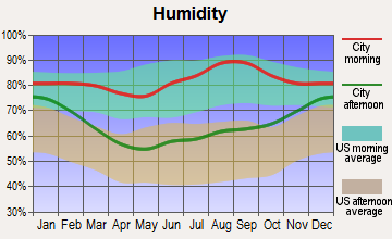 North Muskegon, Michigan humidity