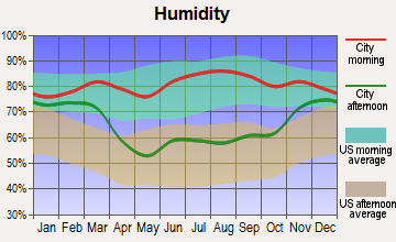 Elizabeth, Minnesota humidity