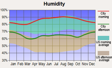 Columbus AFB, Mississippi humidity