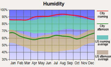 Yazoo City, Mississippi humidity
