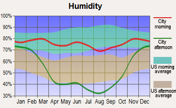 Brockton, Montana humidity