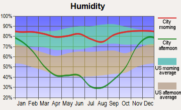 Pinesdale, Montana humidity