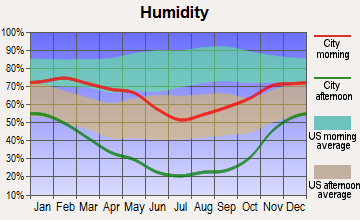 Duckwater, Nevada humidity
