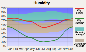 Round Mountain, Nevada humidity