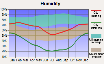 McGill, Nevada humidity