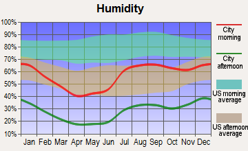 La Luz, New Mexico humidity
