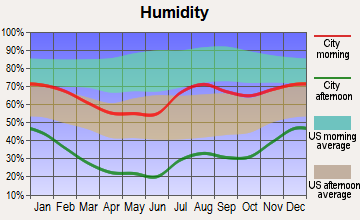 South Rio Arriba, New Mexico humidity