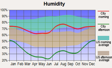 Rio Lucio, New Mexico humidity