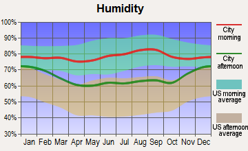 Jamestown, New York humidity