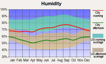 Nyack, New York humidity