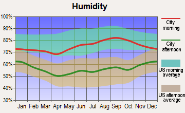 Port Jervis, New York humidity