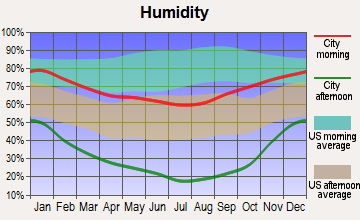 Chilcoot-Vinton, California humidity
