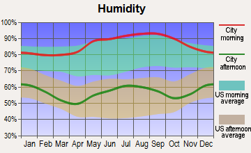 Lansing, North Carolina humidity