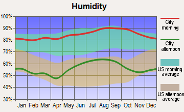Whiteville, North Carolina humidity