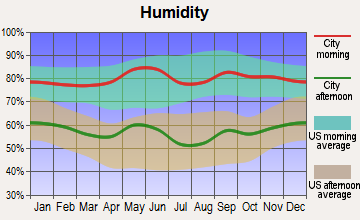 Mill Creek, Oklahoma humidity
