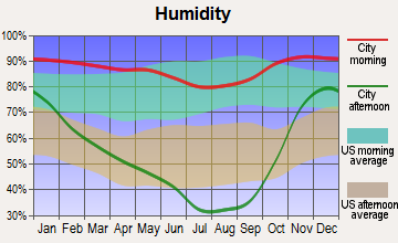 Myrtle Point, Oregon humidity