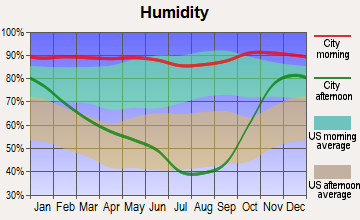South Lebanon, Oregon humidity