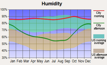 Vernonia, Oregon humidity