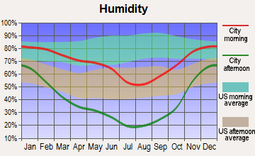Diamond, Oregon humidity