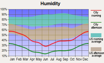 Needles, California humidity