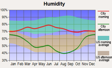 Faith, South Dakota humidity