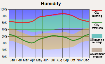 Southwest Nolichucky, Tennessee humidity