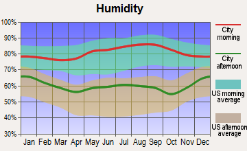 Holly Grove-Belle Eagle, Tennessee humidity