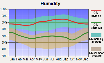 Memphis, Tennessee humidity