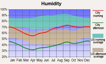 Alpine, Texas humidity