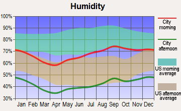 Balmorhea, Texas humidity