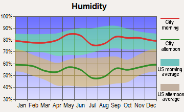 Bellevue, Texas humidity