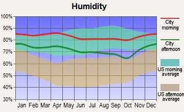 Bolivar Peninsula, Texas humidity