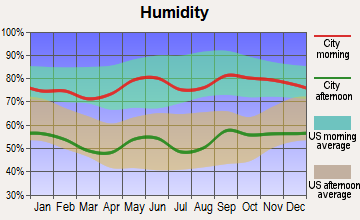 Brady, Texas humidity