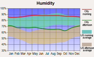Brookside Village, Texas humidity