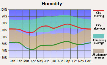 Earth, Texas humidity