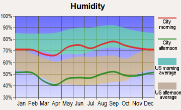 Farwell, Texas humidity