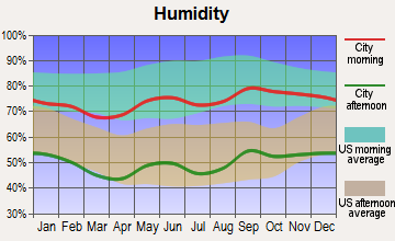 Fort Stockton, Texas humidity