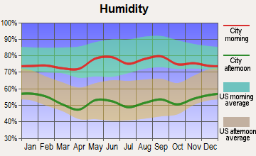 Higgins, Texas humidity