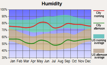 Knox City, Texas humidity