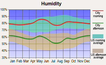 Lake Bridgeport, Texas humidity