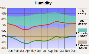 Marathon, Texas humidity